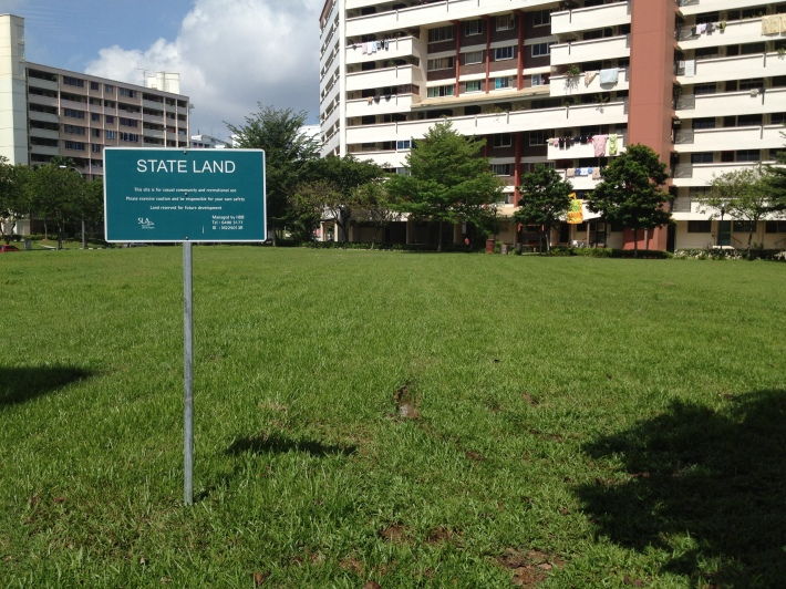Singapore soccer grass patch
