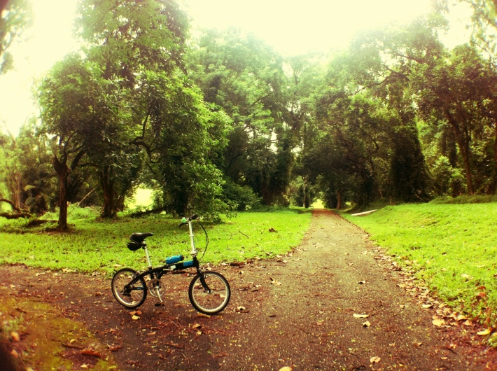 Cycling at Bidadari Cemetery with the morning dew still fresh is something one can hardly experience