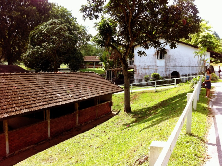 The horse stables at the bottom with the legendary Rider's cafe in the background