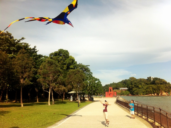 Kite flying in Labrador Park