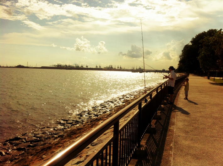 Labrador Park with its rich marine biodiversity is also a hit with anglers