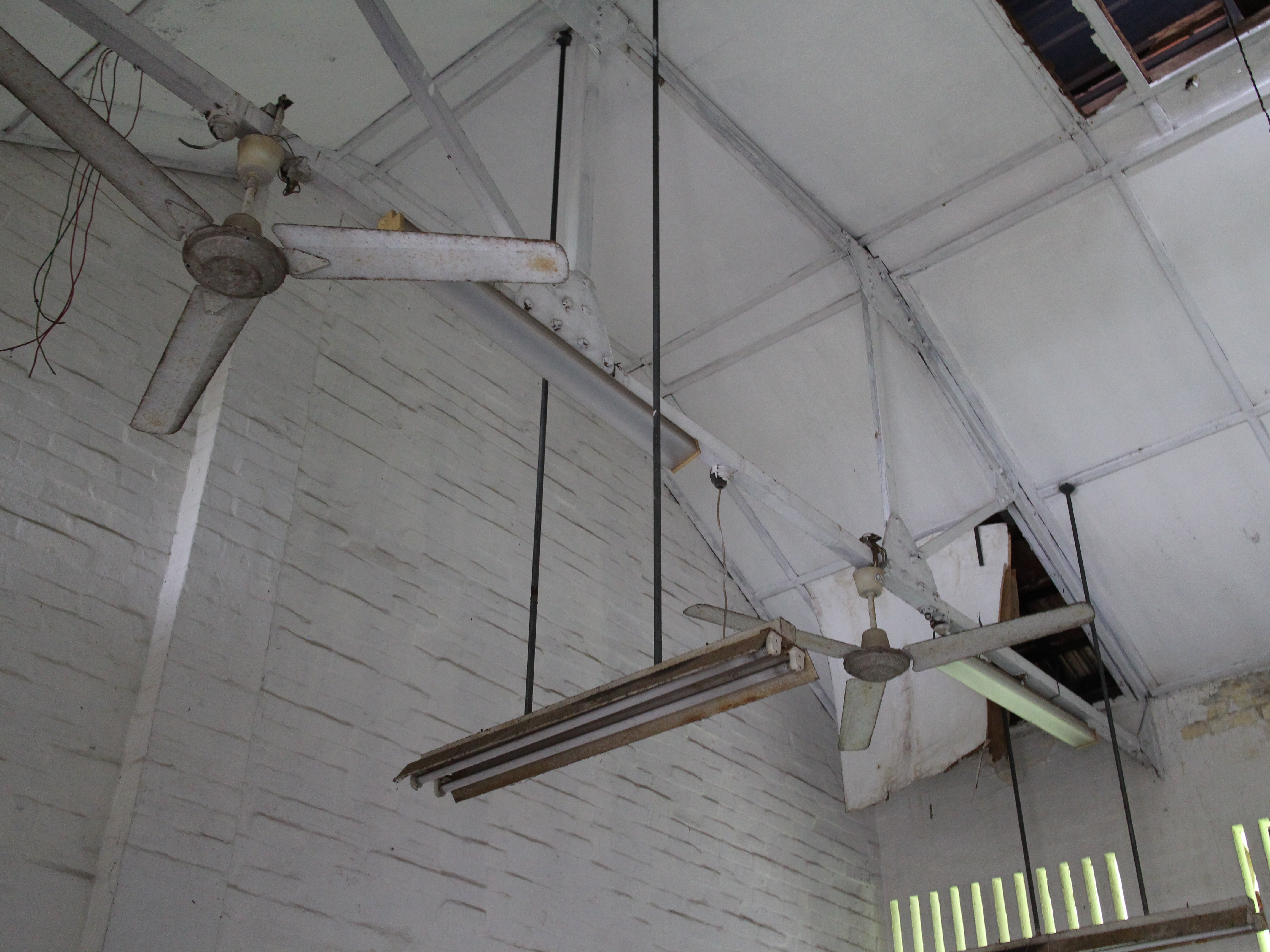 Building Ceiling Fan : Hendon road abandoned colonial buildings the lion raw