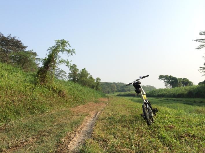 Cycling to Lorong Halus