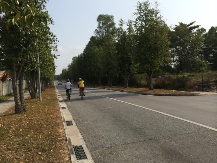 Cyclist along Pasir Ris Farmway