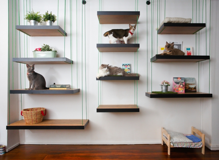 The Company of Cats is a beautifully designed place that aims to provide both cats and customers a relaxing place to be in.